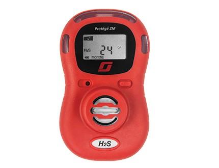 Protege ZM Eingas Messgerät H2S